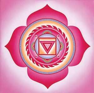 1 Чакра - Муладхара